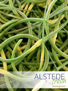 Alstede Fresh Garlic Scapes